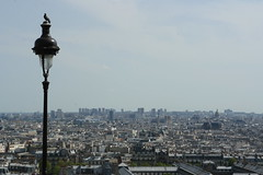 Le pigeon de Montmartre
