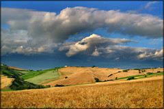 gold (gigi 62) Tags: summer sky italy clouds canon landscape san italia nuvole estate natura severino cielo fields marche paesaggio italians grano macerata campi potofgold sanseverino colorphotoaward theunforgettablepictures concordians platinumheartaward theperfectphotographer ixus960is worldwidelandscapes flickrestrellas discoveryphotos saariysqualitypictures platinumpeaceaward
