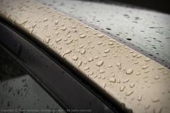 13: More Rain (Peter Morawski) Tags: water car rain project droplets pentax champagne peter zen da 365 windshield imagery exposures morawski 18250 k100d 18250mm justpentax zenimagery 365exposuresproject petemorawski
