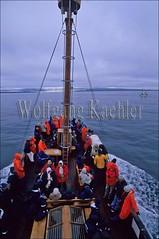 40053540 (wolfgangkaehler) Tags: tourism boats boat iceland europe european tour husavik whalewatching icelandic ecotourism tourboat tourgroup tourboats ecotours ecotravel