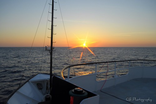 Sunset on the Sargasso Sea