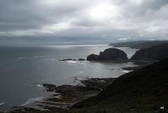gris (Marin ;)) Tags: naturaleza mar verano cantbrico