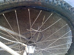 Busted Spokes