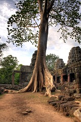 banteay kdei (Dave_B_) Tags: trees people history colors sunrise person ancient nikon asia cambodia seasia king khmer south tourists east backpacking temples siem reap civilization projects orient siemreap angkor hdr vii banteaykdei banteay d90 jayavarman kdei worldtour2010 inspiringangkor