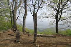 高塚山の山頂