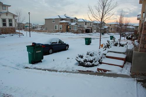 Snow - 1/12/09