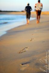 DOF joggers on the beach