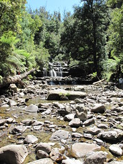 IMG_0412 (vishdish) Tags: water waterfall liffey tasmania 2009 liffeyfalls