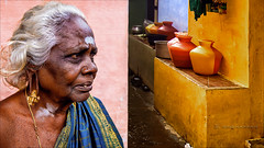 Jallikattu Woman (Henk oochappan) Tags: 2009 madurai oochappan travel tamillifeculture jallikattu palamedu asia women dravidian tamil woman tamilnadu southindia india indianphotography indianlady tamilwoman tamilwomen indianwomen img5209
