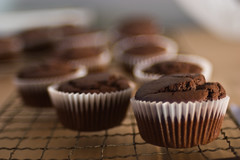 Muffins - 12 (Skink74) Tags: 20d cake muffins baking yum bokeh chocolate eos20d cookery nikkor35f14 nikkor35mm114ai