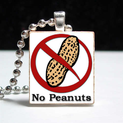 No Peanuts Allergy Alert Pendant
