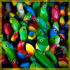 Gee, it's getting a little crowded in here... (bert.raaphorst) Tags: colours vivid aruba explore souvenir shops colourful parrots crowded vividcolors papegaaien fineartphotos mywinners flickrdiamond notaloneanymore itscrowdedinhere colorsinourworld