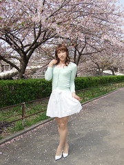 day109-217 cherry blossoms (Yumiko Misaki) Tags: white green cherry blossoms knit skirt osaka lime day109