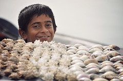 Shell seller (Alieh) Tags: boy water smile persian iran shell persia vendor iranian ایران youngster seller فروش qeshmisland ایرانی پسر hormozgan صدف aliehs alieh ایرانیان پرشیا عالیه سعادتپور saadatpour جنگلحرا جزیرهقشم upcoming:event=2112901