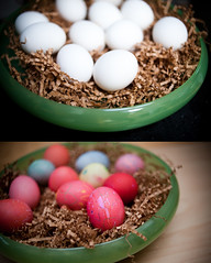 hunt (ctrain99) Tags: color contrast easter design eggs ebphotography nikond700