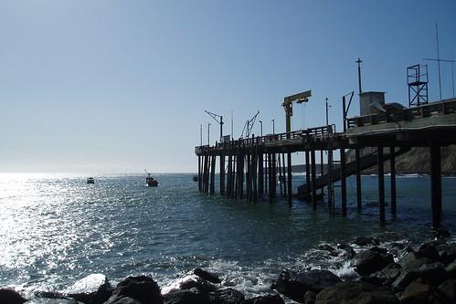 Arena Cove Pier 01