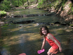 shelby 7 (cdq3) Tags: flowers wild lake creek outdoors woods woodlands tennessee brook theta natuer