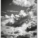..San Vicino soffocato dalle nuvole