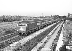 'The Western Pullman'. Queens Head, Handsworth. 3 July 1964 (ricsrailpics) Tags: uk blue diesel pullman western 1964 multipleunit paddingtonwolverhampton