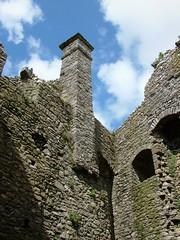 Weobley Castle (Jacqueline Ross) Tags: castle southwales wales spring ruin april cadw gowerpeninsular weobley jacquelineross april2009