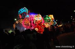 Carnaval 2009 -  Défilé de Nuit