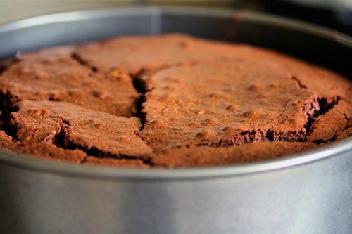 chocolate cake 2184