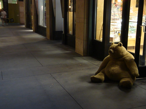 Bear on the street