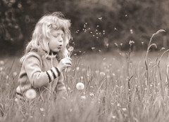 Carefree days (Tellyazz) Tags: summer bw clock girl sepia youth spring child play young meadow monotone dandelion carefree