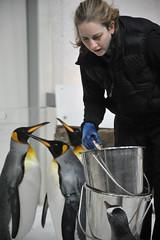 Melbourne 2009 - Melbourne Aquarium (3)