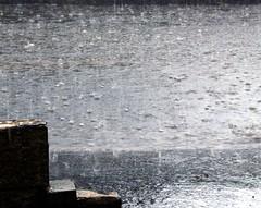 Rain (spratmackrel) Tags: uk greatbritain england storm rain britishisles unitedkingdom britain sheffield gb raindrops floods southyorkshire heavyrain srairrods roadbecomesariver