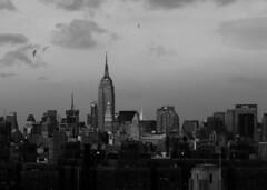(Bravo213) Tags: nyc newyorkcity blackandwhite bw brooklynbridge empirestatebuilding cy challengeyouwinner