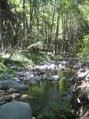West Fork San Gabriel River.jpg (Mount Wilson, California, United States) Photo