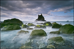 1244 (Tenerife, costa Norte) (Joserra Irusta) Tags: longexposure sunset sea seascape clouds landscape atardecer mar nikon shorelines silk paisaje nubes tenerife seda rocas algas islascanarias acantilados verdin largaexposicion taganana oceanoatlantico benijo joserrairusta paisajemarino d700 tamrom1735mm wwwjoserrairustacom roquedebenijo