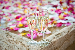 Brindis Copas I (Juan Antonio Cap) Tags: wedding texture textura rose petals pattern drink background champagne boda rosa surface celebration cups mariage trinken fondo muster cava copas bltenbltter tassen textured bebida champan hintergrund celebracin boisson superficie sfondo brindis petalos  oberflche  ptales modello patrn textur  bieten coupes brindar  consistenza   canoneos5dmarkii    fournir canon24105mmf4eflisusm