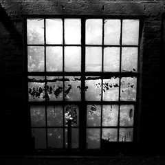 The World Outside (Eddy Maynard) Tags: old urban blackandwhite white black building canon flickr decay urbandecay 7d teenager exploration middlesbrough derelict abandonment oldbuilding photostream destroy councilestate boro urbex inglebybarwick canon7d facebookcomeddymaynard eddymaynard