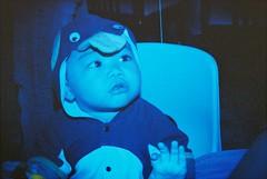 blue penguin (Jay Panelomo) Tags: party people baby film kids analog person penguin costume holga lomo lomography child colorsplashflash analogue vignetting lex vignette vignettes 135bc holga135bc blackcorners panelomo jaypanelo