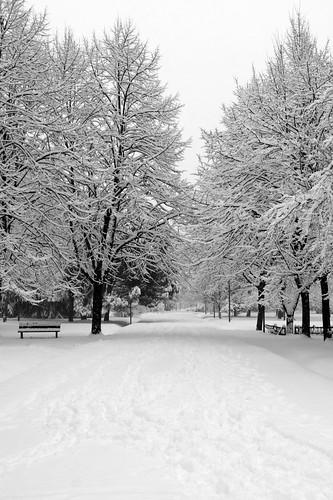 Paderno Dugnano e la neve