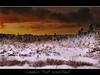 Nova Scotia sunset (Dave the Haligonian) Tags: ocean trees sea sky snow canada storm water fog pine clouds marine bravo novascotia bank atlantic explore nd layer blizzard hdr terencebay neutraldensityfilter novascotiasunset dsc262342tif