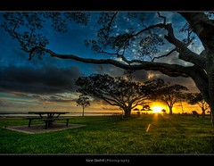 A place for a picnic ([ Kane ]) Tags: morning sky sun green grass clouds sunrise table dawn explore qld rays kane hdr wellingtonpoint gledhill kanegledhill vosplusbellesphotos kanegledhillphotography