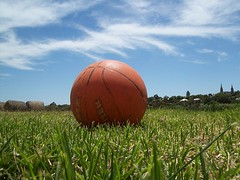 basketball, anyone? (Thiru Murugan) Tags: orange macro field basketball rural ball landscape countryside afternoon bright walk hamilton sunny australia victoria walkabout regional paddock thiru midnoon