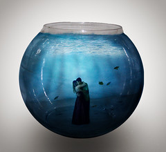 I'll be your dream, I'll be your wish, I'll be your fantasy... (miriness) Tags: blue portrait love couple underwater surreal fishtank fishbowl embrace photoshoped outoftheblue miriness fishtankwithpeopleinit