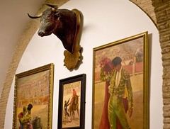 Famous bull that killed a famous matador (moedonno) Tags: bill bull rizzo