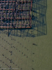 Bent skeletal warehouse remains stand in Hudson River at 63rd Street (scottdunn) Tags: kite photography aerial hudsonriverpark gothamist kap aerialphotography kiteaerialphotography gawker lightroom scottdunn fotografiaareacompipa photosexplore photoparcerfvolant fesseldrachenluftbildfotografie