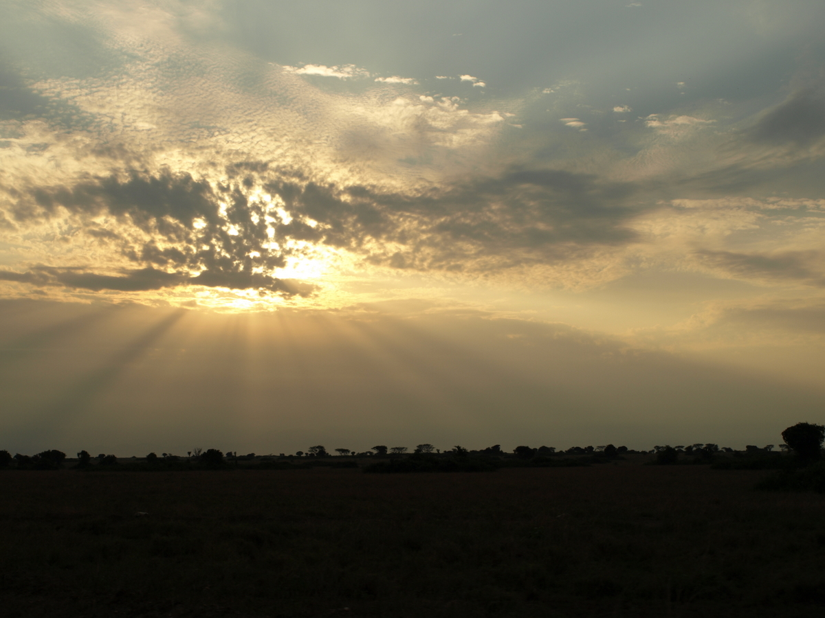 Dawn of Queen Elizabeth National Park