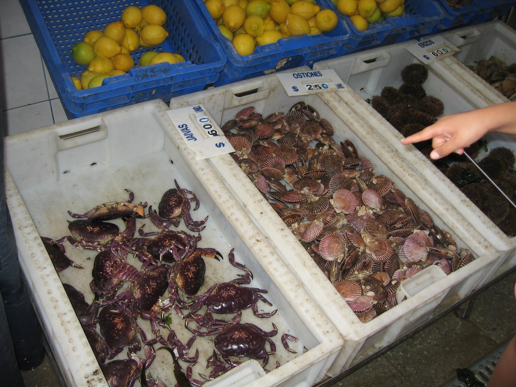 Algarrobo Fish Market