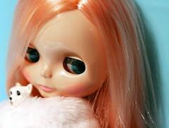 17.02.09 Mademoiselle Rosebud