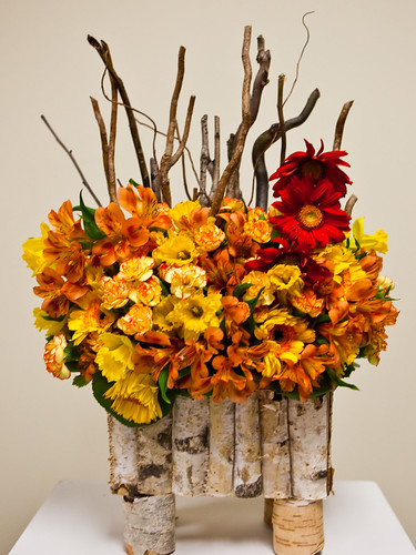 Winning Flower Arrangement by pdbreen.