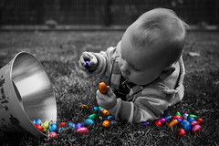 Which egg should I eat? (Pieter D) Tags: blue red portrait bw orange baby white holiday black cute yellow photoshop canon garden purple thomas chocolate egg eggs pasen belgianchocolate pieterd 40d ef2470l