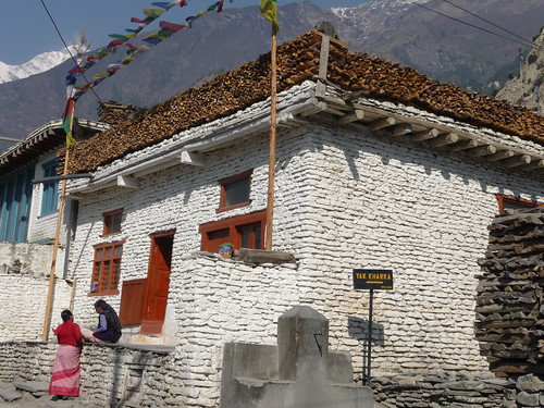 Typical house near Marpha