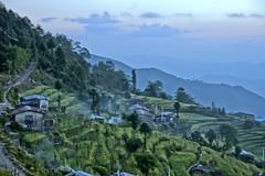 Nepal - alba a Sermathang (nepalbaba) Tags: nepal sunrise trekking alba platinumphoto earthasia rubyphotographer paololivornosfriends sermathang nepalbaba